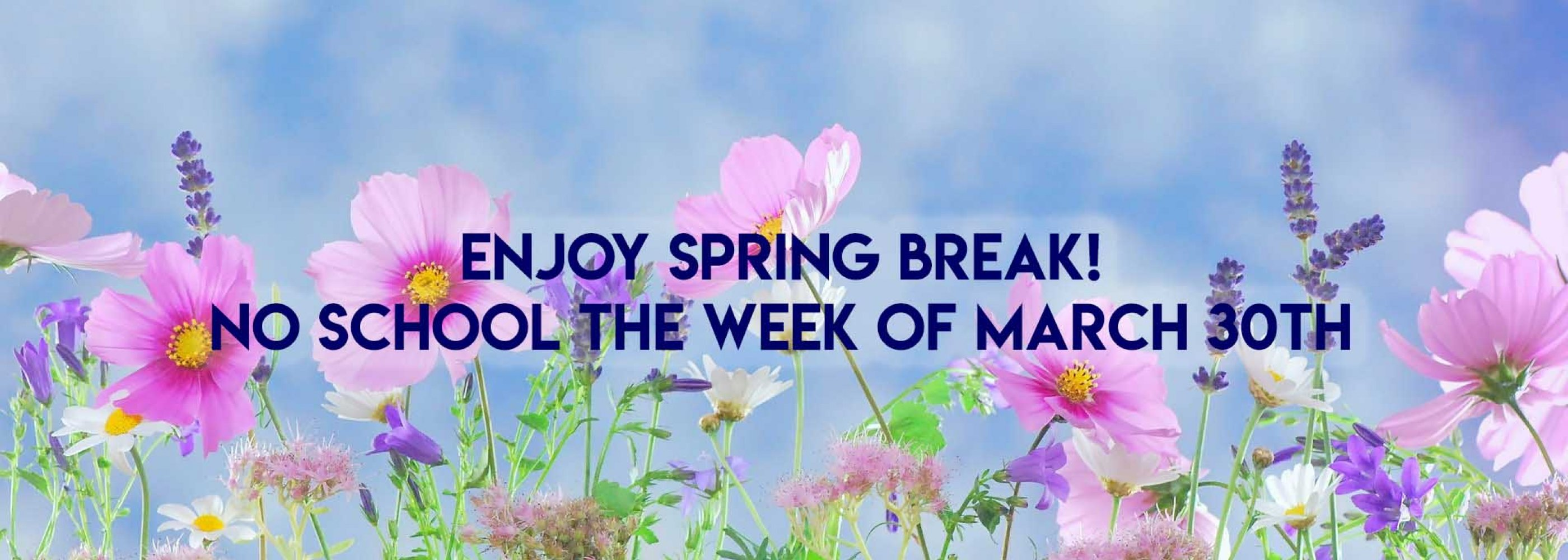 SPRING BREAK NO SCHOOL WEEK OF MARCH 30